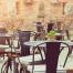 controle de pragas em restaurantes previne doenças