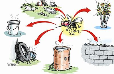 Prevenção contra os tipos de dengue