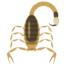 Desenho de escorpião amarelo em fundo branco: conheça a reprodução dos escorpiões