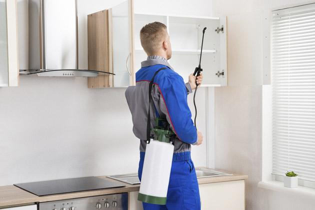 funcionário praticando a dedetização residencial