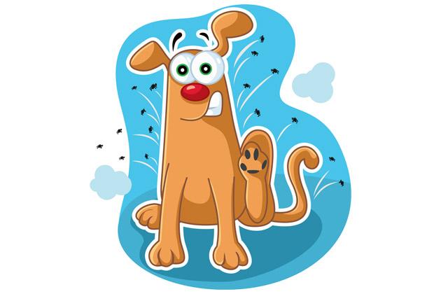 """Cachorro com olhos esbugalhados pensando: """"O que vai eliminar as pulgas?"""""""
