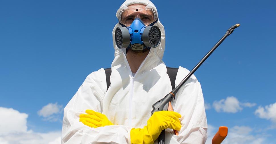 Por que contratar uma empresa especializada no controle de pragas?