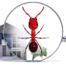 Na imagem vemos um imóvel alugado infestado de formigas.