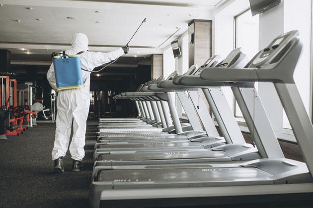 sanitização de empresas da Insect Bye